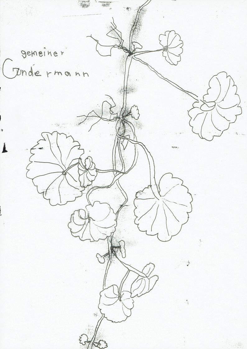 Gräben umspringen (Gundermann)